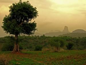 Assurance voyage Éthiopie