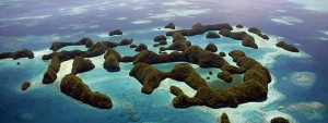 Assurance voyage Micronésie