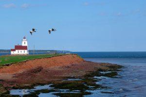 Voyage de luxe au Canada : à la découverte de nos cousins