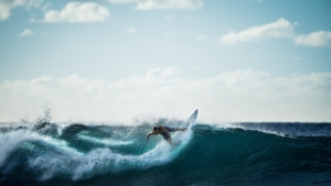 surf assurance