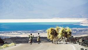 Assurance voyage Djibouti