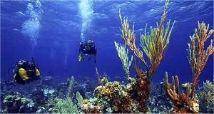 Assurance voyage Îles Turques-et-Caïques