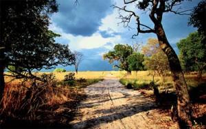 Assurance voyage Zambie